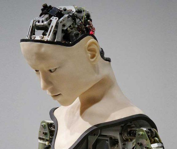 Mänsklig robot