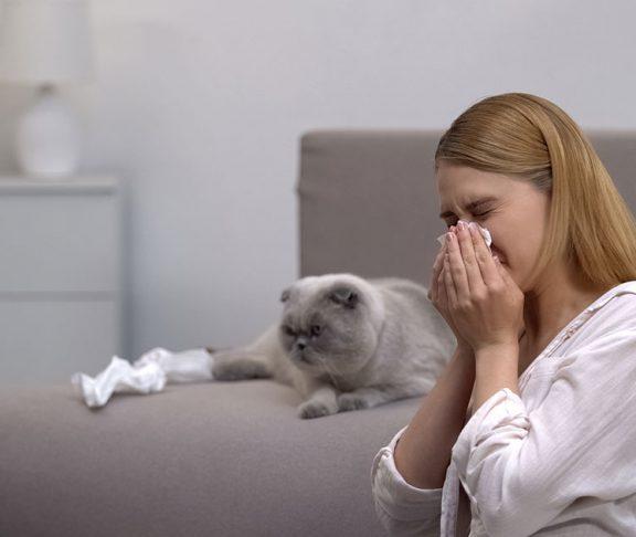 alergia-układ-odpornościowy