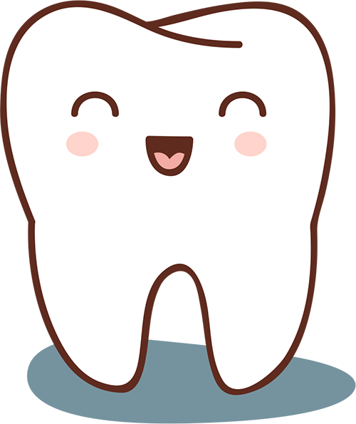 Baby tooth illustration