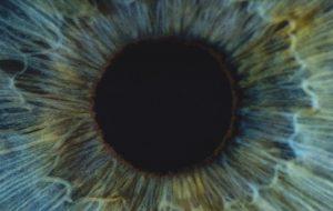 Closeup of an eye's iris and pupil