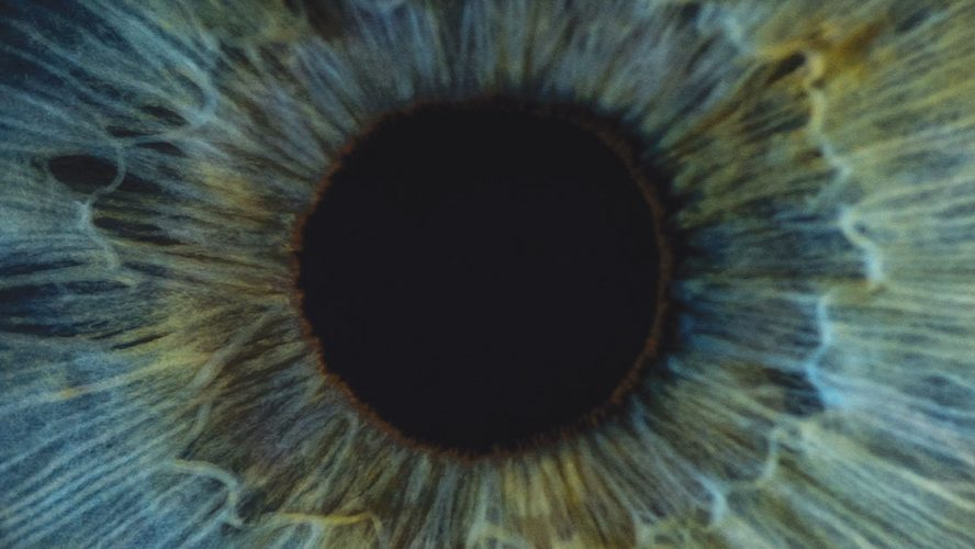 Closeup of an eye's iris and pupil