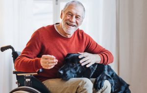 Smiling senior man in a wheelchair, with a dog's head in his lap