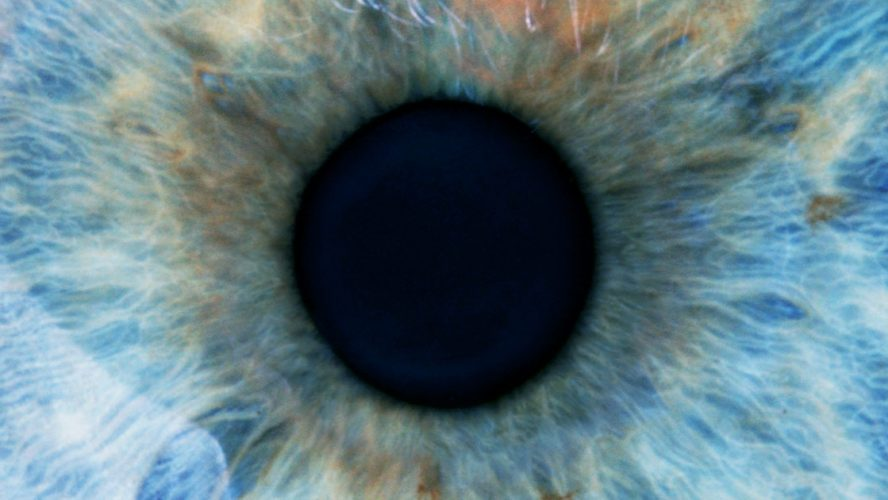 Close-up photograph of the iris and pupil of a human eyeball