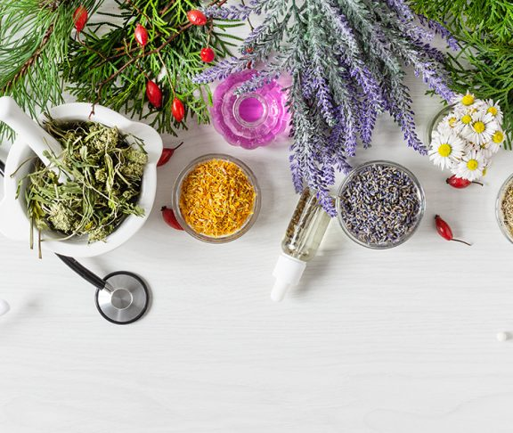 Herbs, flowers and fruits used to make medicine