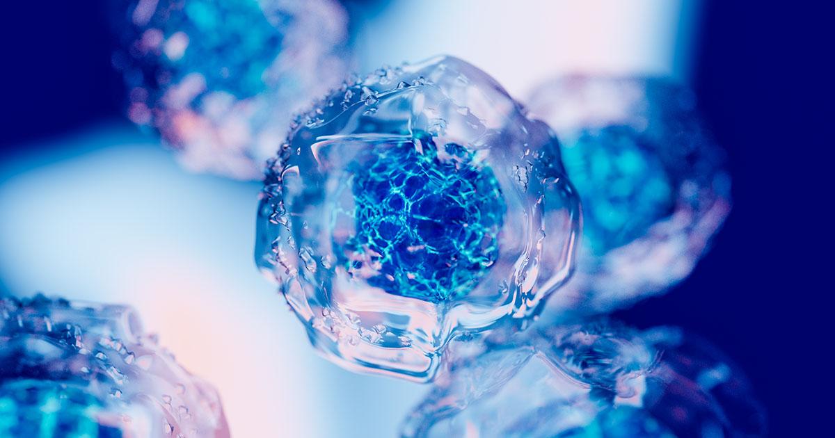 emryonic stem cells intellistem
