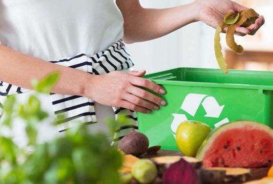 Kitchen food waste