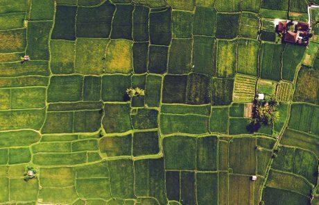 Agricultural Innovation header