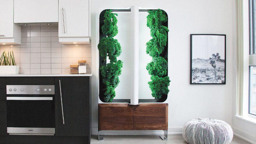 AEVA indoor garden system in a kitchen