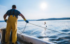 Fisherman handling a net