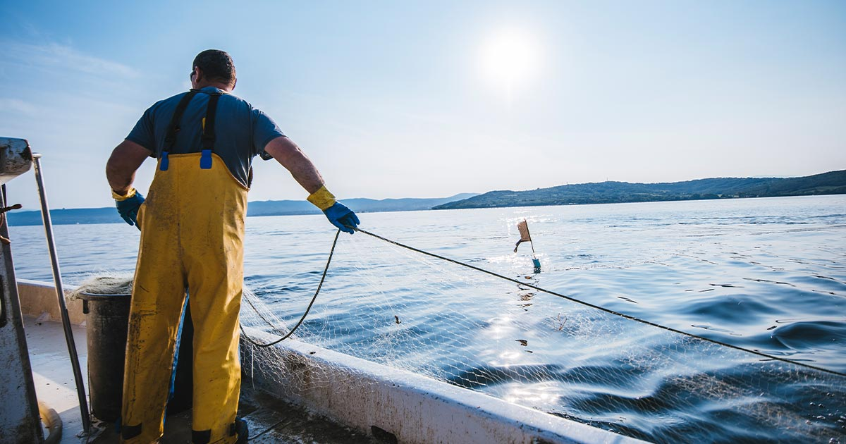 Fisherman handling a net