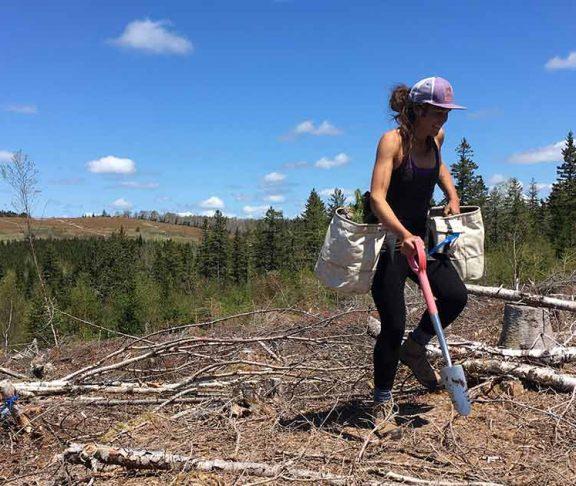 Tree Canada tree planter planting trees