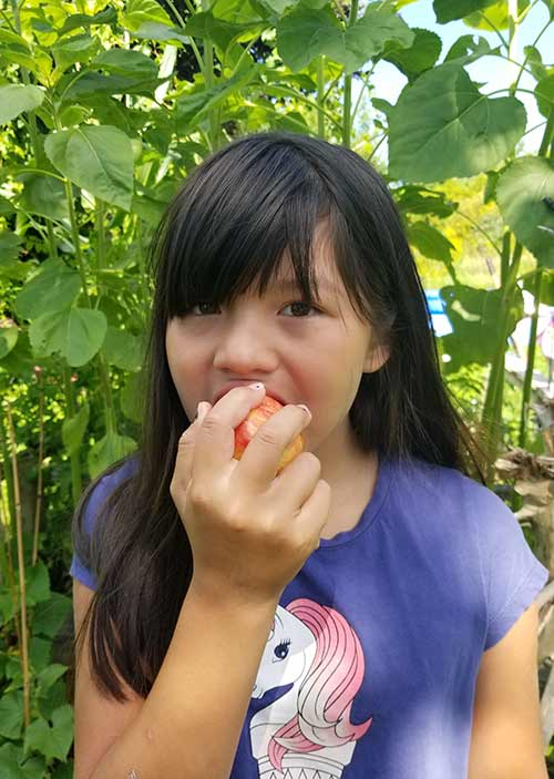 Young girl eating an apple in the outdoors
