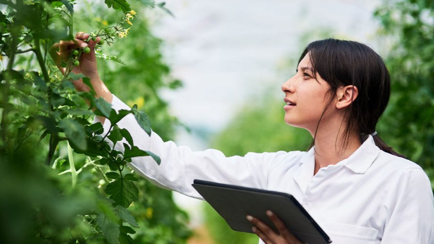 Young woman holding digital tablet and inspecting plant in a nursery