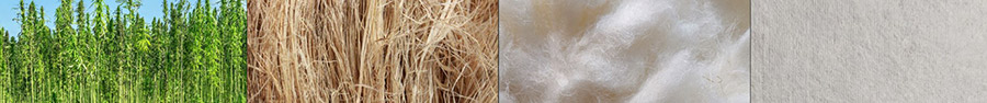 The four stages of hemp used by Bast Fibre Technologies
