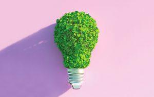 Lightbulb made of leaves
