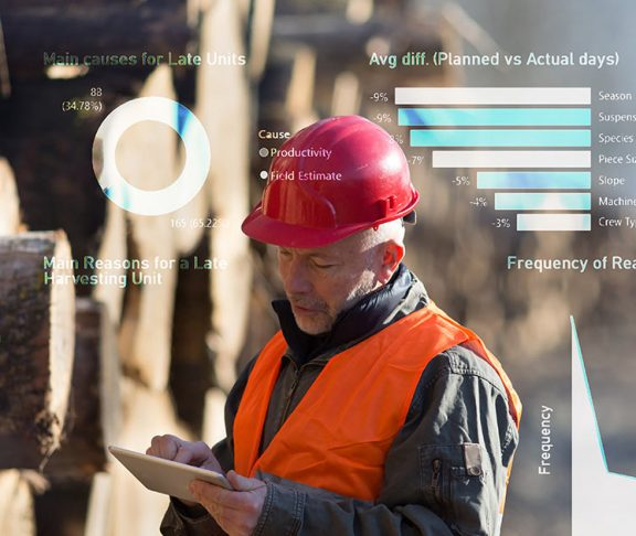 Lumber specialist using a digital tablet while working at a mill