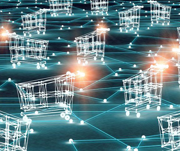 Digital shopping carts