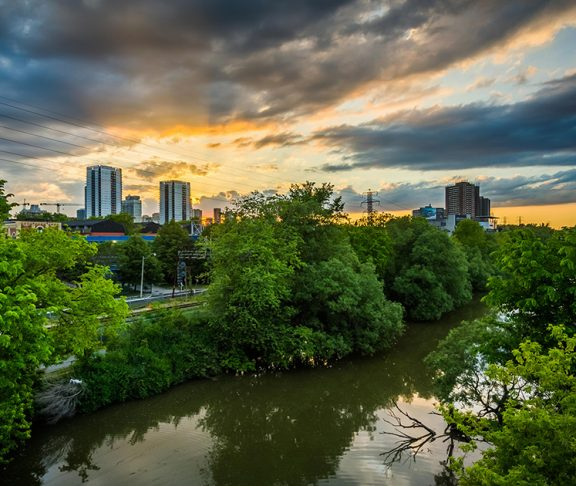 Forest and city skyline from Greenbelt foundation