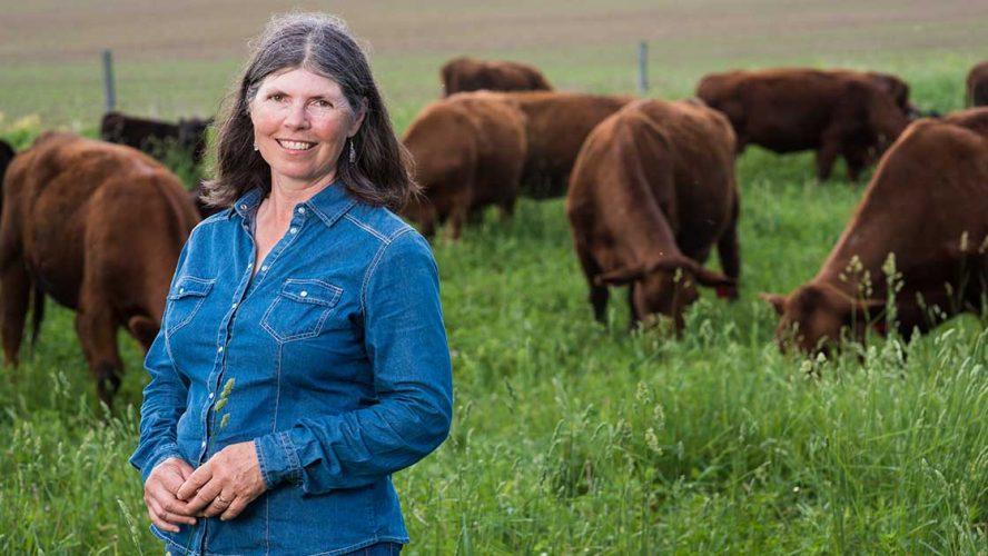 sandra voz ontario beef farm