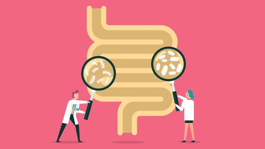 Cartoon of doctors looking at intestine
