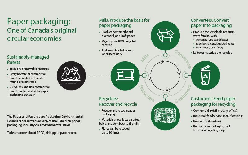 ppec infographic circular econ