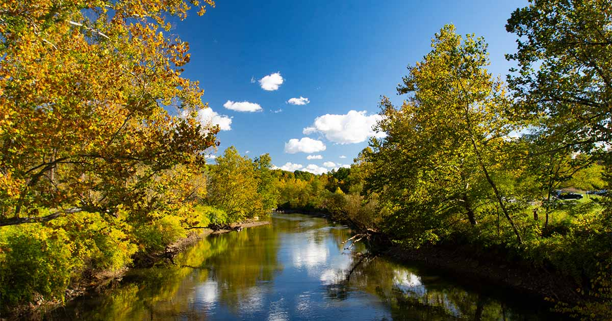 nature river scenery brantford
