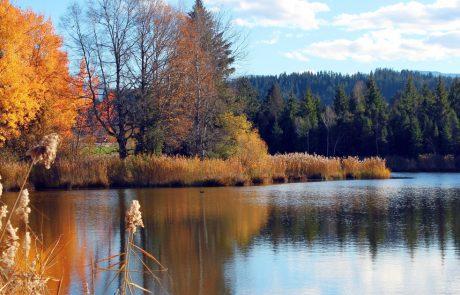 Faszination Natur- Deutschlands Naturparke!