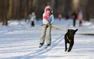 Es muss nicht immer Skifahren sein
