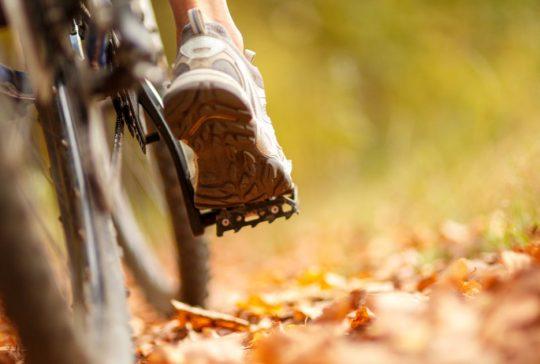Radfahren ohne Knieschmerzen