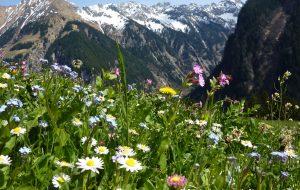 Sölden - Ferien in Österreichs Traumtal