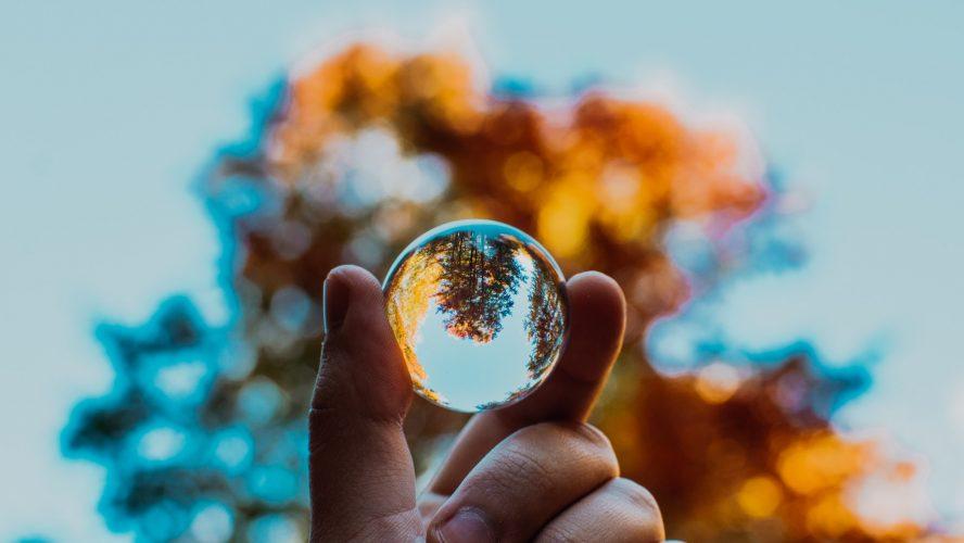 Fingrar som håller i en glaskula framför ett träd