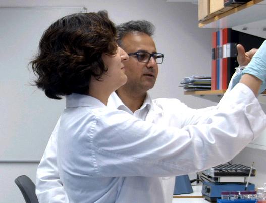 Disputerade forskarna Dr. Mehrnaz Nouri och Dr. Shahram Lavasani. Baserat på erfarenheter från immunologi, mikro-biologi, probiotika-och läkemedelsforskning har bolaget lagt grunden för att ta fram vetenskapligt designade probiotiska produkter.