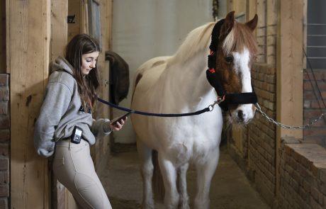 tjej vid häst med diabetespump