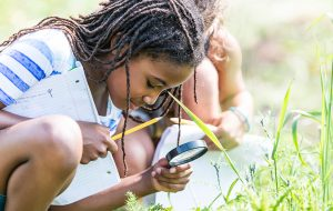 Young girl studying bugs