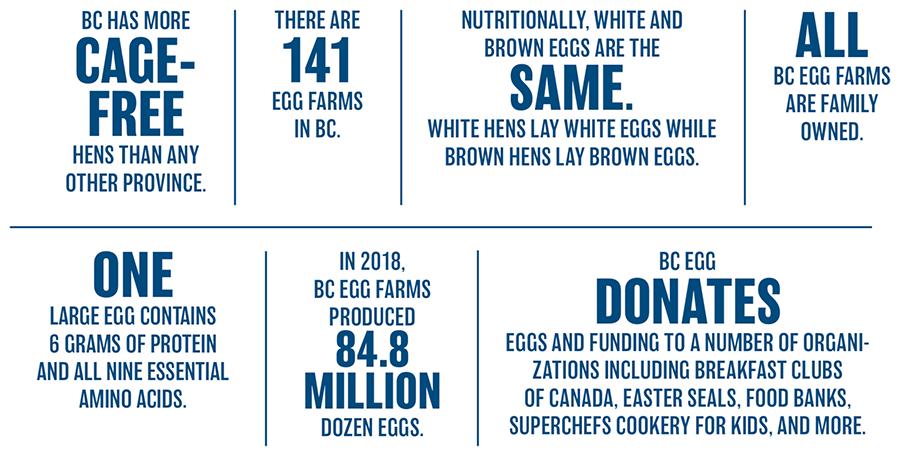 BC Egg Infographic