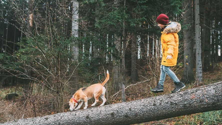 Child and dog walking over a log