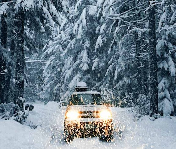 Driving through a snowy forest