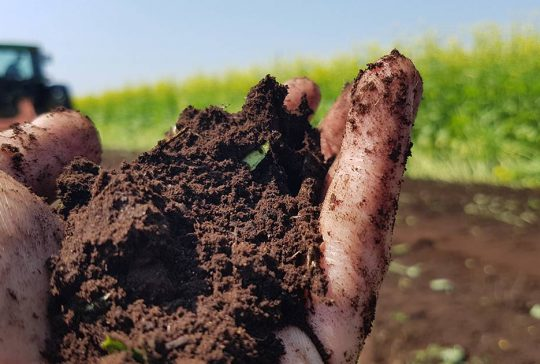 A hand in a field holding soil