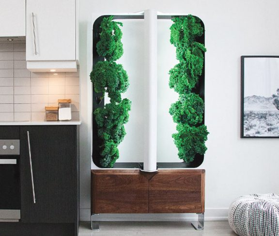 AEVA indoor garden system in a kitchen