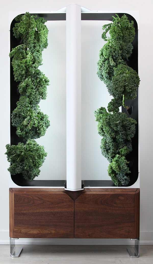 AEVA indoor garden system