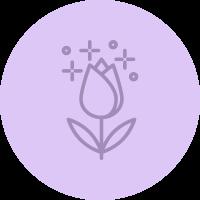 Schmidt's infographic icon flower