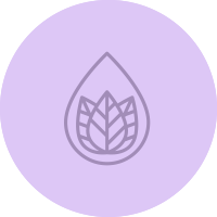 Schmidt's infographic icon water and leaf