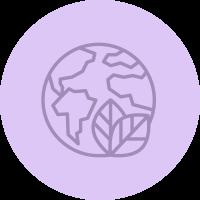 Schmidt's infographic icon globe