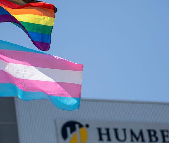 humber college 2SLGBTQ inclusion