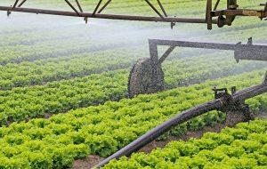 Kierunki rozwoju maszyn rolniczych
