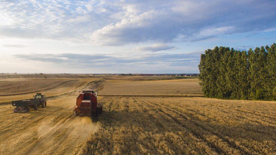 Nowoczesne i odpowiedzialne rolnictwo