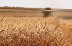 Wyzwania polskiego rolnictwa