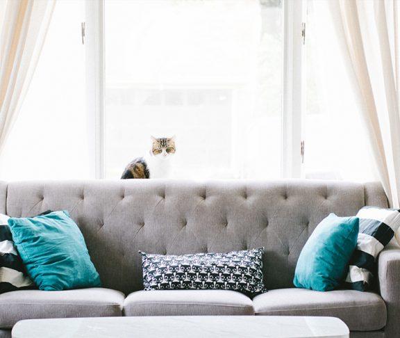 Jak możemy poprawić jakość powietrza w pomieszczeniach?