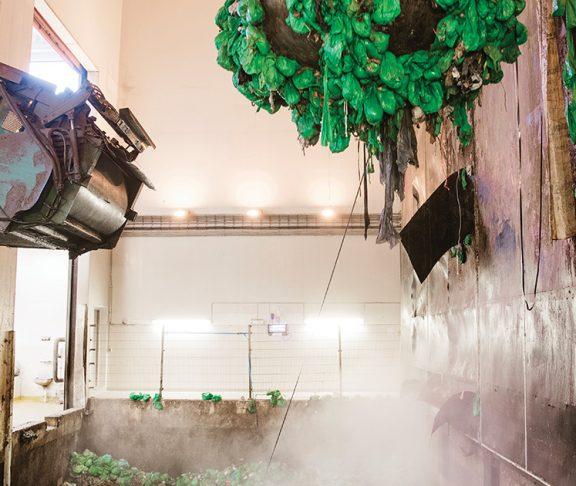 Biogass-anlegg