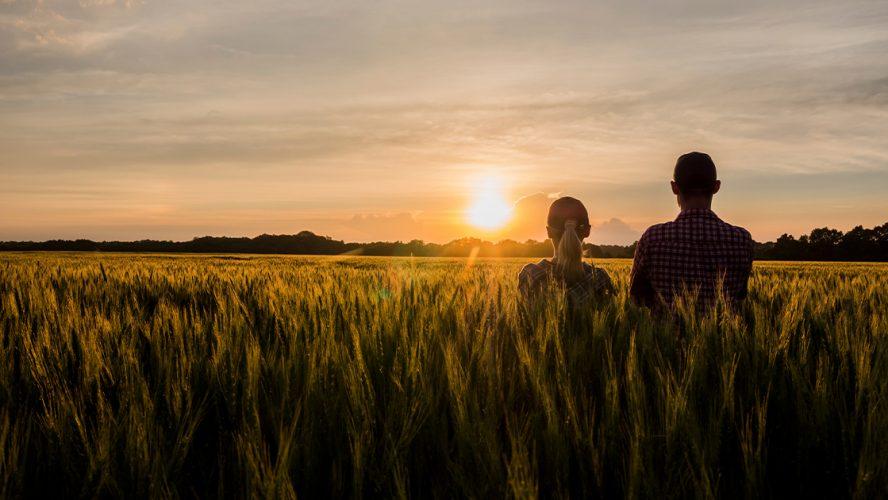To perosner i en åker i solnedgang